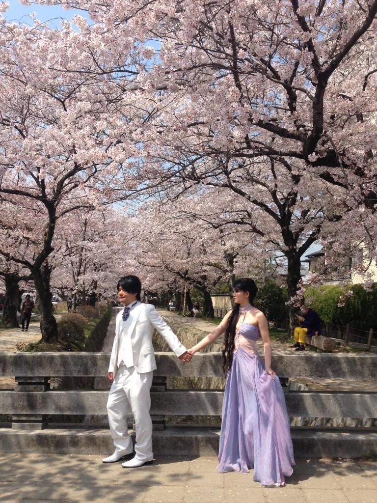 Za vrijeme Sakure se u Kyotu sklopi najviše brakova