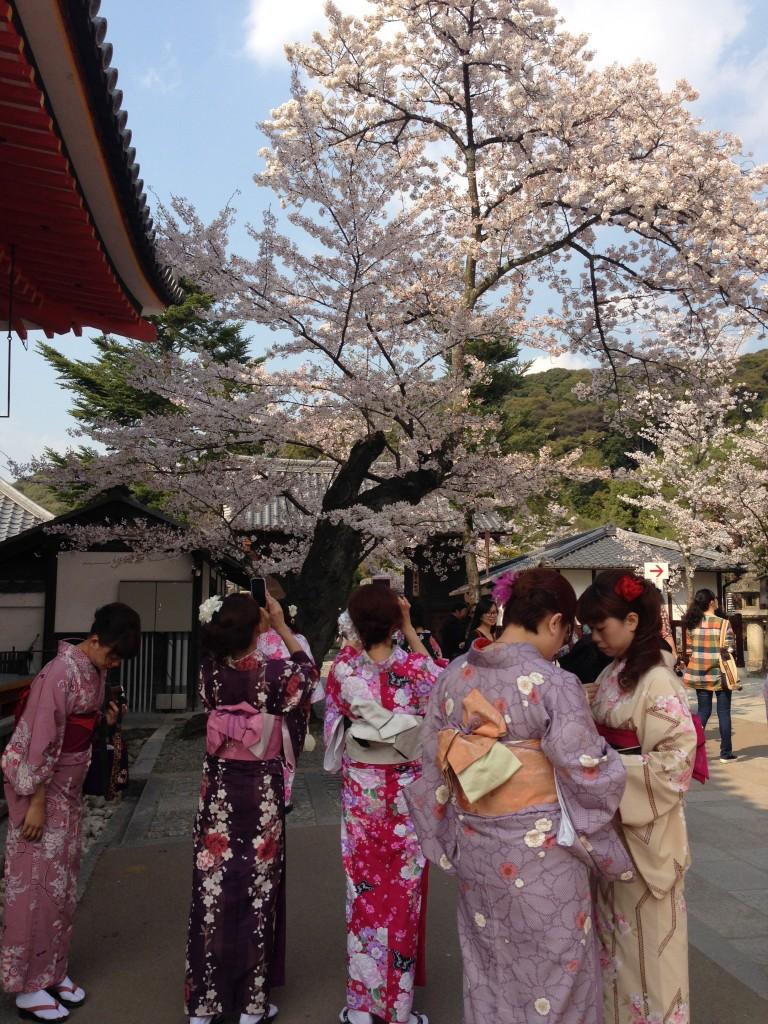 Najveća gužva je bila ispred hrama Kiyomizu dera